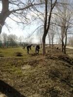 Весенний субботник и посадка деревьев!